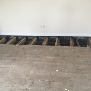 New joists sections