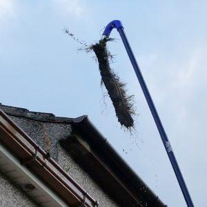 gutter cleaning Moir Green