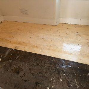 flooring being treated