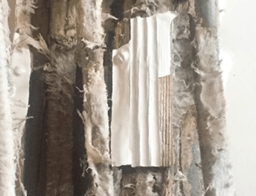Dry Rot at Carlton Place