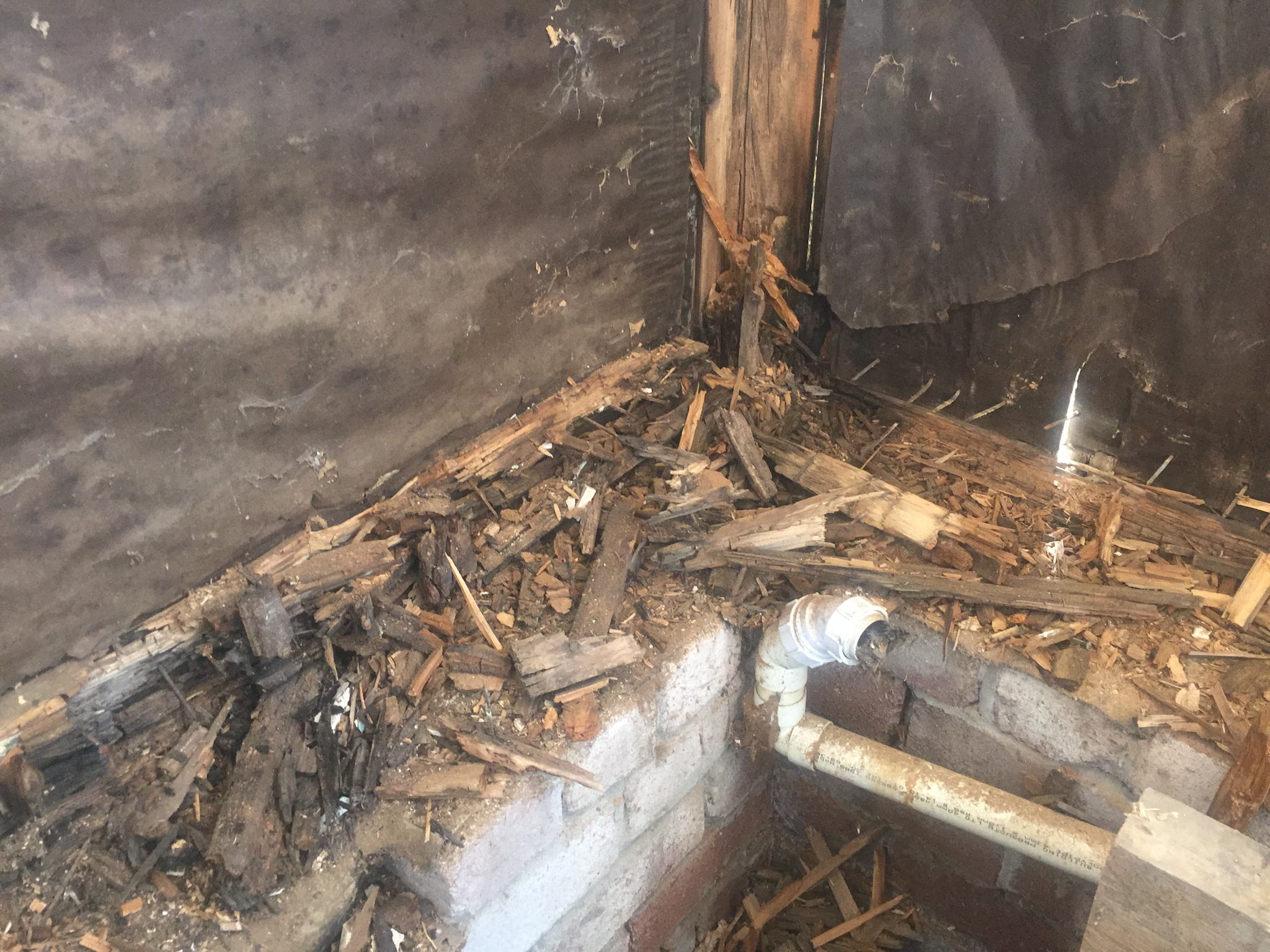wet rot in support framing