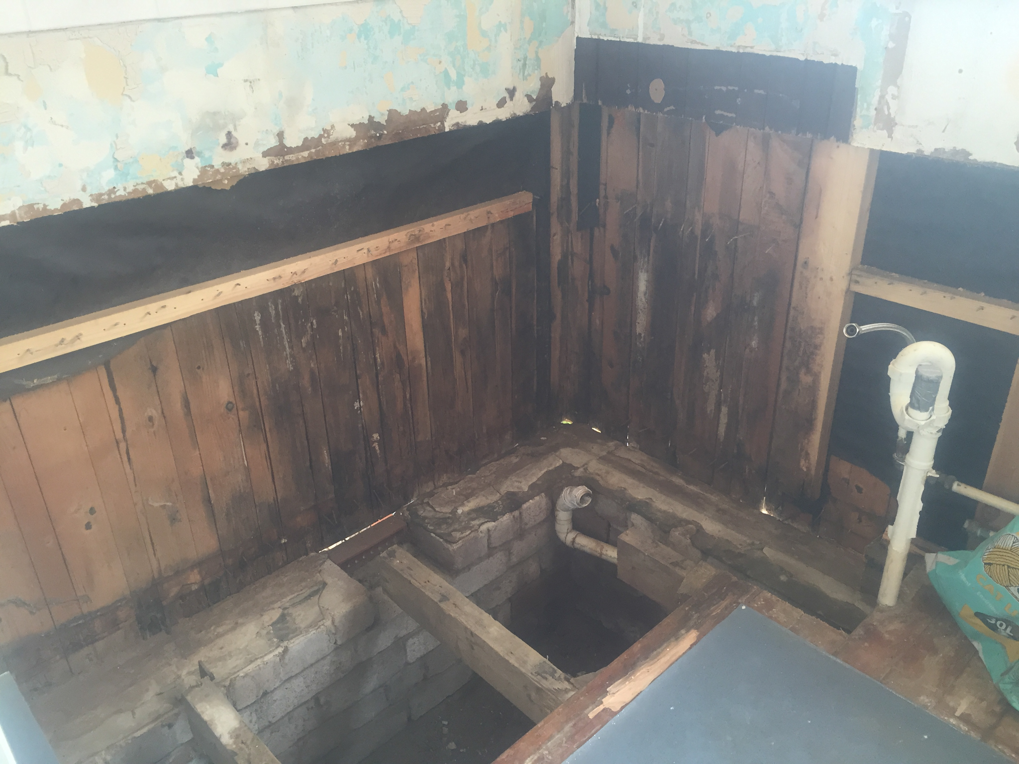 wet rot in bathroom