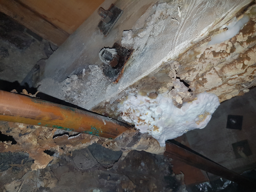 dry rot outbreak on previously bolted on joist