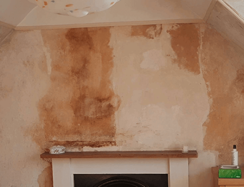 Penetrating Damp Charleston