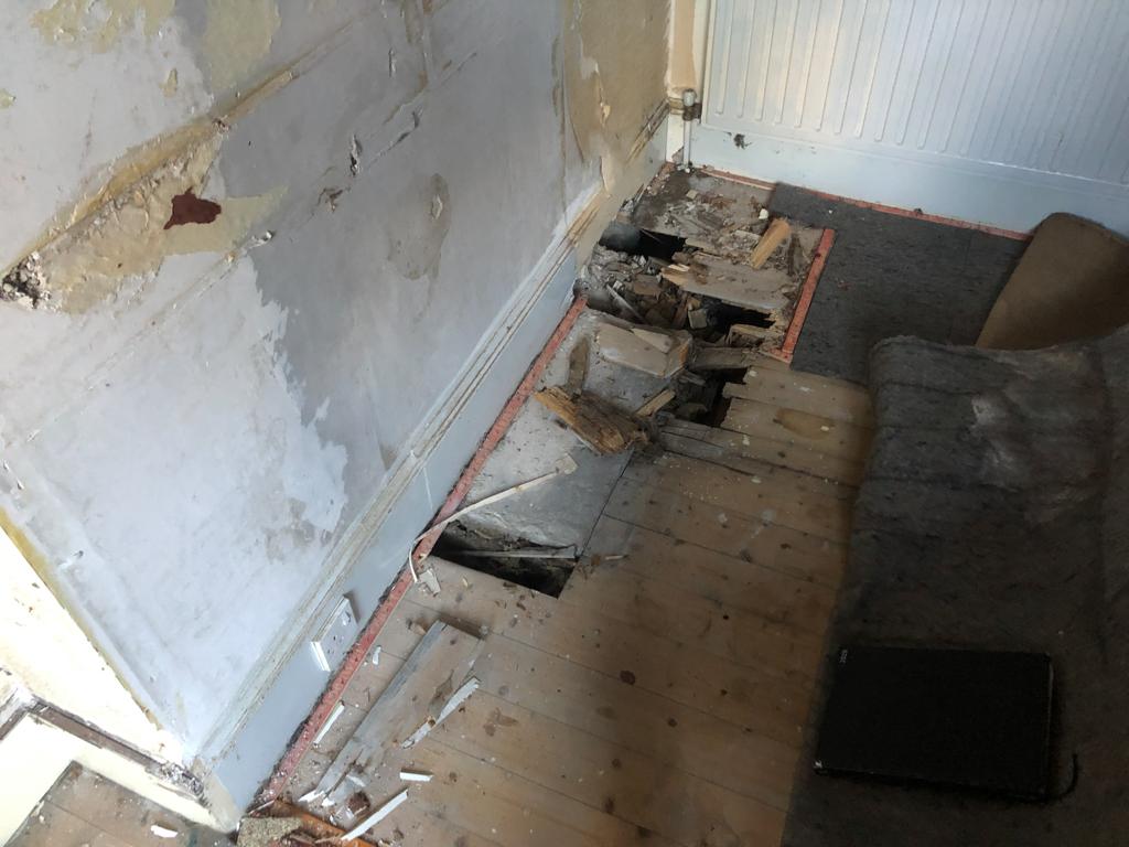 dry rot on floor